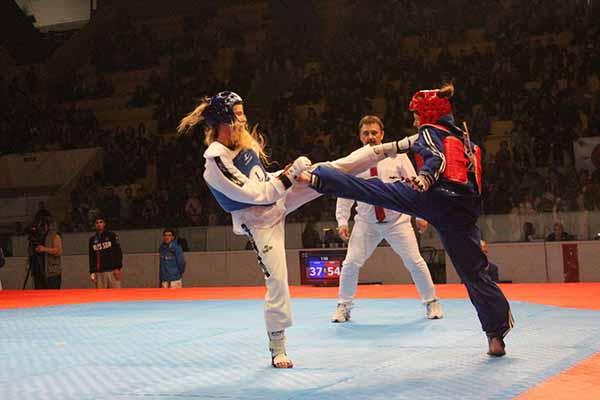 В Липецке состоялся Всероссийский турнир по тхэквондо